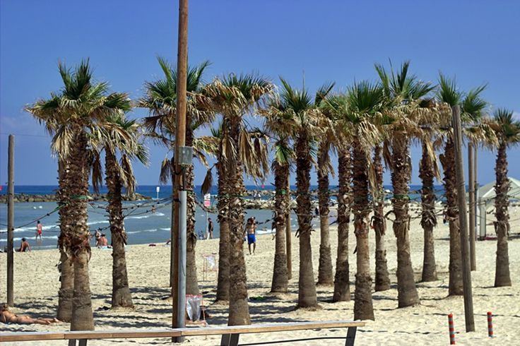 Tel Aviv beach in June 17 #beach #telaviv