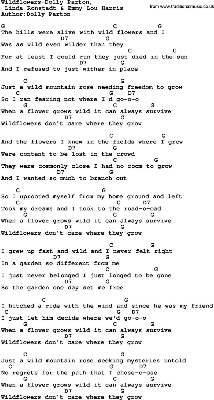 Country Music Song Wildflowers Dolly Parton Lyrics And Chords