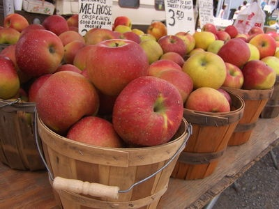 This table describes the best apples for baking and cooking in North America from The Old Farmer's Almanac. Also gives nutritional information on apples.