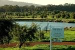 About - Petra Extra Virgin Olive Oil Margaret River Region | Luxury Self Contained Holiday Accommodation
