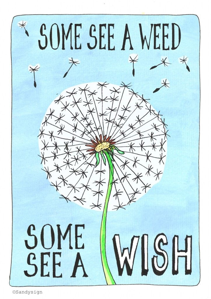 Some see a weed, some see a wish. Illustration made by http://sandysign.nl  ©Sandysign