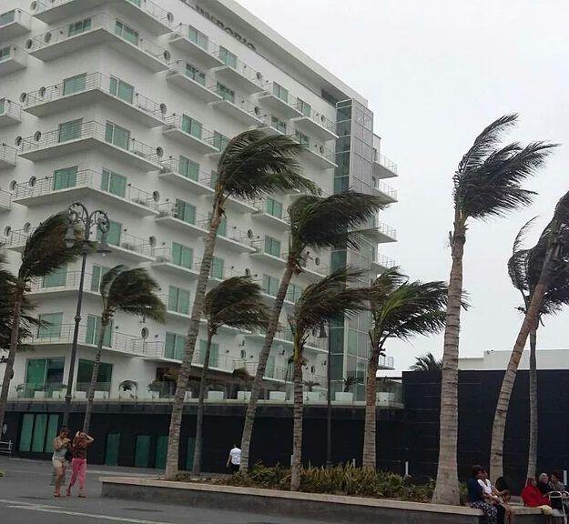 #VienenLasVacacionesY así las rayas del norte en el Malecón #Veracruz foto by meteo veracruz  #mexico #veracruz2016  #weather  #clima #photo #jarochilandia #travel #trip #Windy #palms #norte #viento #picoftheday #good #malecon #saturday