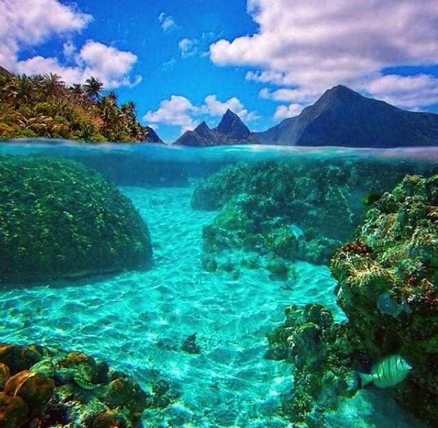Samoa Beaches: Oceans, Seas, Snorkeling, Dive, Diving, Underwater, Water