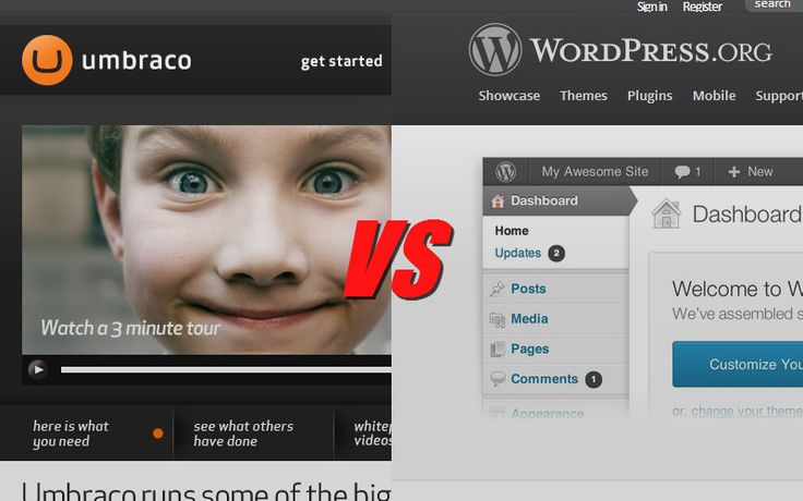 Umbraco vs WordPress – Which CMS is better?