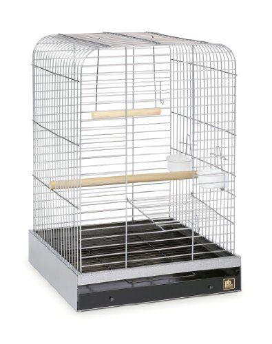 Prevue Pet Products 125C Parrot Cage Chrome For Sale https://birdhousesforoutside.info/prevue-pet-products-125c-parrot-cage-chrome-for-sale/