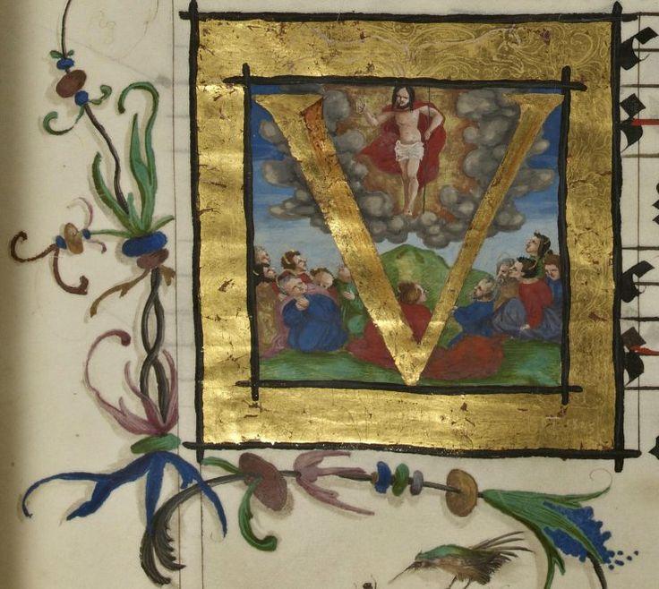 Manuscrits latins. Antiphonaire-graduel Date d'édition : 1523-1525 Sujet : Strasbourg. Diocèse. Célébration des fêtes Type : manuscrit Langue : Latin
