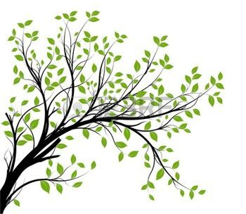 arbres dessins: Vecteur - décoratif silhouette de branche et des feuilles vertes, fond blanc