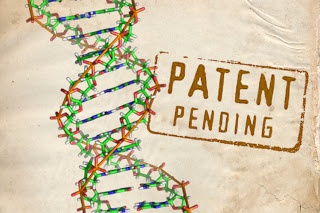 In a unanimous ruling, the United States Supreme Court ruled today that human genes cannot be patented. The ruling invalidates the thousands of patents that have already been granted on human genes, including the patent by Myriad Genetics on the BRCA breast cancer genes which the company says no one else can research or even detect without paying it a royalty.