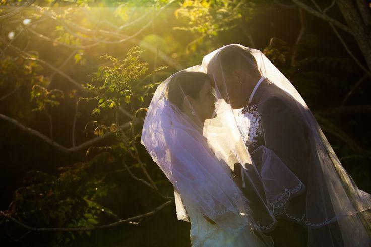 Bride & Groom + veil, sunlight