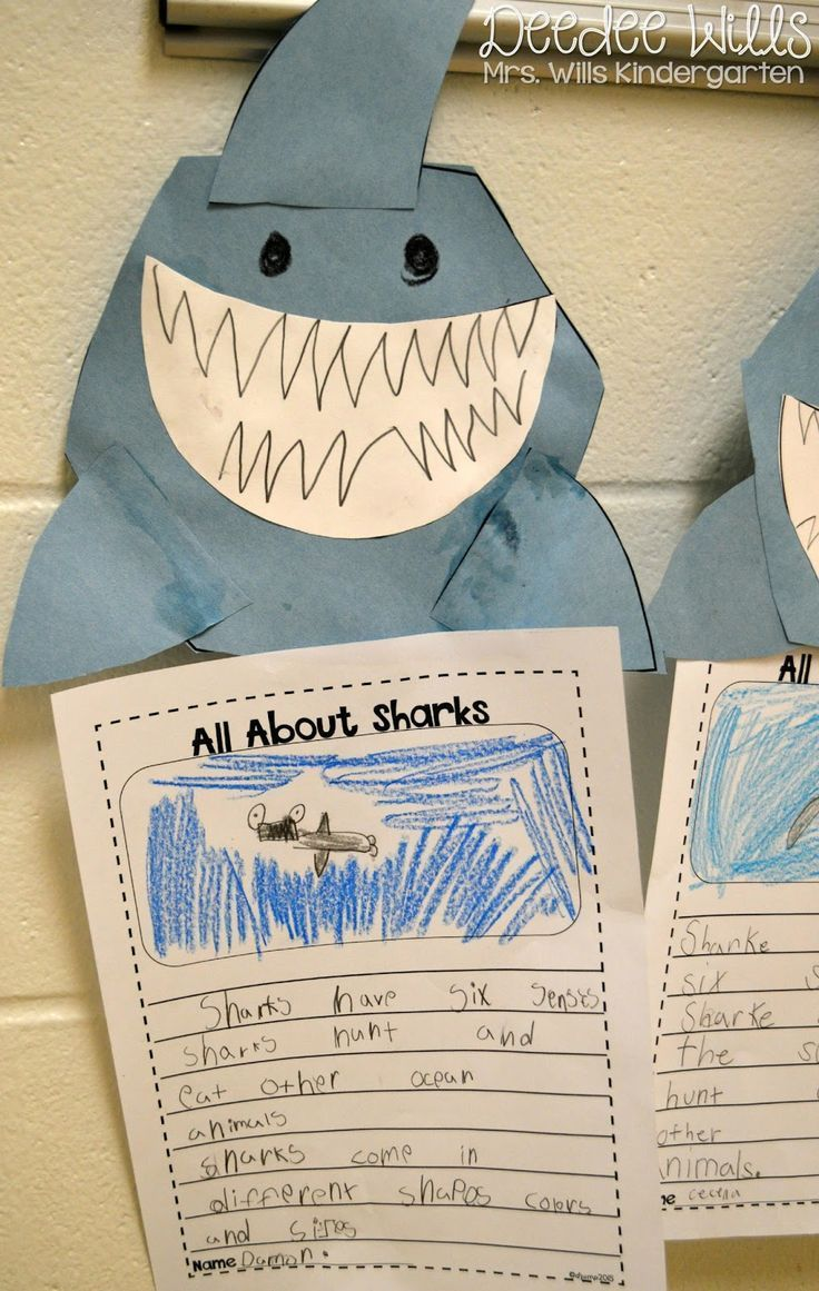 Here's a full week of Ocean Week Lesson Plans for Kindergarten and First Grade! Here's one of the many fun activities we did on sharks.