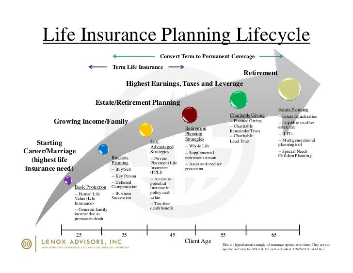 Family Life Cycle Google Pretrazivanje Life Cycles Whole Life
