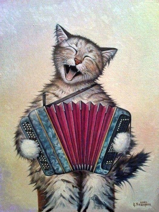 Kat met accordeon