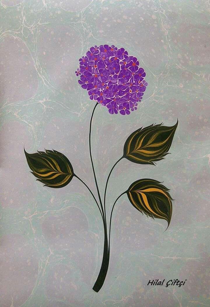 Hilal Çiftçi - Ortanca Çiçeği
