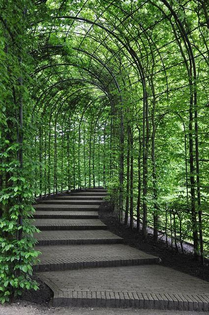 Alnwick Castle Gardens - Alnwick Northumberland