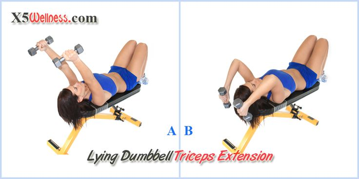 Lying Dumbbell Tricep Extension