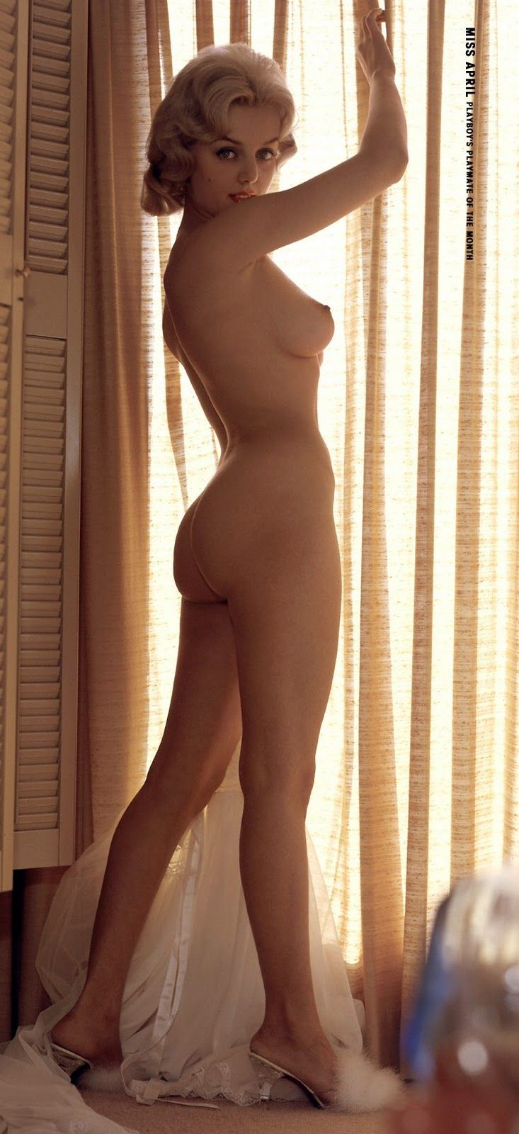 Stella Stevens Pussy Beautiful 760 best playboy playmates images on pinterest | playboy playmates
