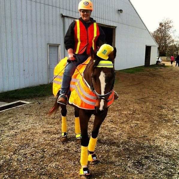 Safety & Construction Worker - Horse Costume Contest Halloween Job