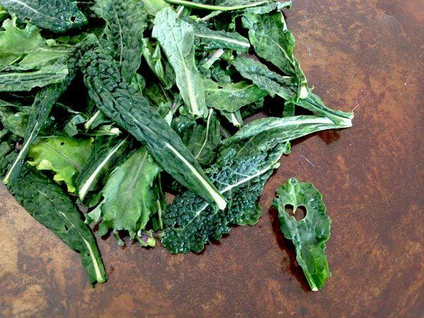Kale, col rizada