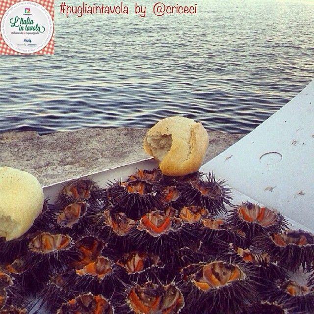 #Italianstreetfood parte 2^. Ci spostiamo in #Puglia per gustare due ricci fronte mare #italiaintavola #pugliaintavola #italianfood #italy