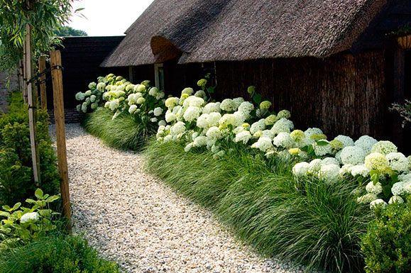 25 beste idee n over hortensia tuin op pinterest hortensia landschapsarchitectuur hortensia - Moderne landschapsarchitectuur ...