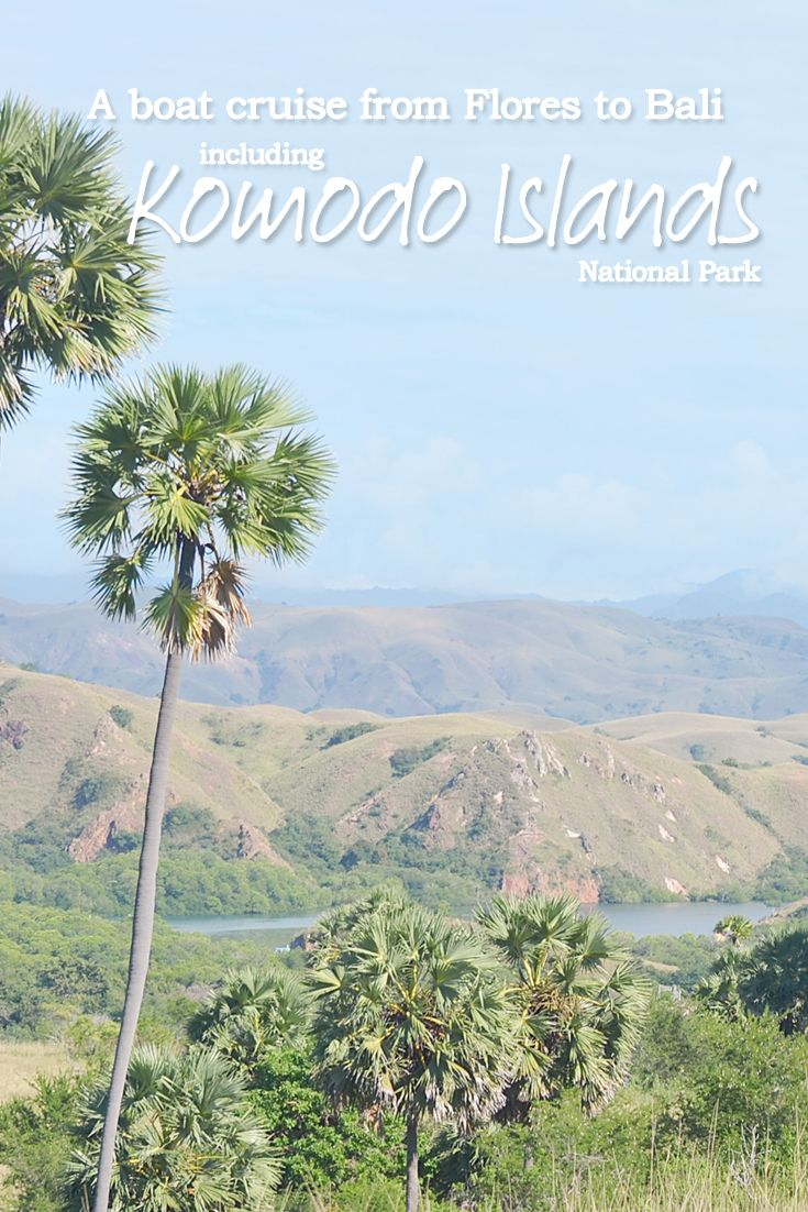 A boat cruise from Flores to Bali – including Komodo Island National Park