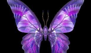 Крылья бабочки костюм сделать самой