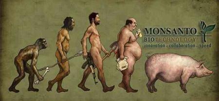 Los 12 Productos más terribles de Monsanto