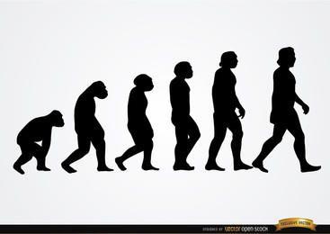 Siluetas evolución humana