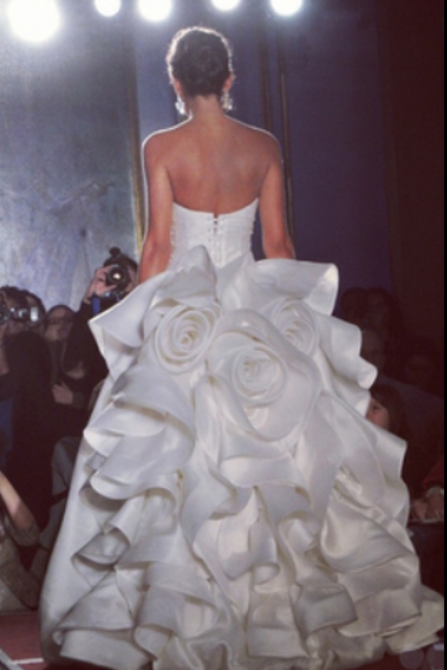 Dream wedding dress 15 000 pnina tornai ball gown my for What to do with my wedding dress