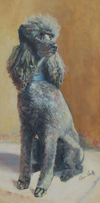 Artist Ann Sheltz standard poodle painting                                                                                                                                                      More