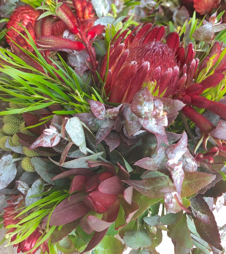 Ruby Red colour palette posy Flower delivery, Australian