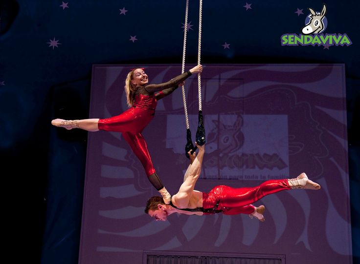 Nuevos acr batas del circo de sendaviva en un momento de for Lo mas nuevo del espectaculo