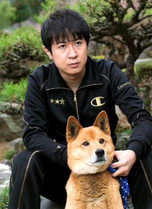 杉田智和 犬の直司