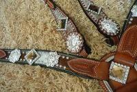 Bling horse tack!