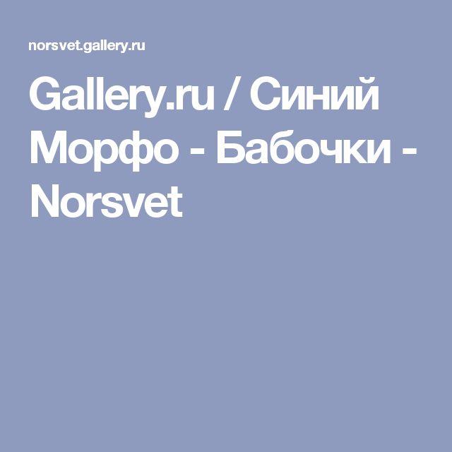 Gallery.ru / Синий Морфо - Бабочки - Norsvet