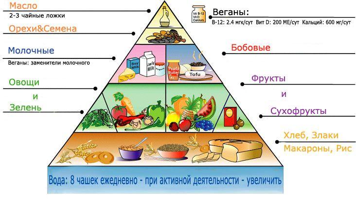 вегетарианская пищевая пирамида