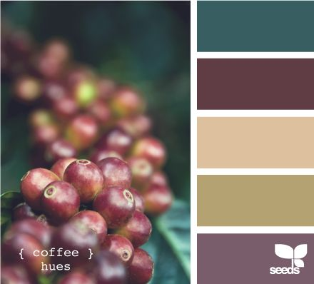 Coffee Hues - LOVE this palate... will probably be using it for my apartment, but with a couple of small adjustments. The green-ish colour (at the top) will be blue, and the yellow-ish colour (2nd from bottom) will be a chocolate brown.
