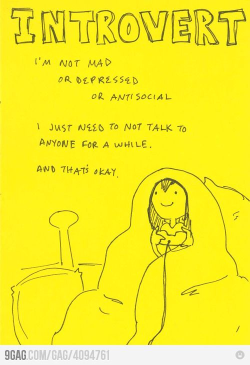 Introvert. I also love that she's in a blanket cocoon, which is one of my favorite things.