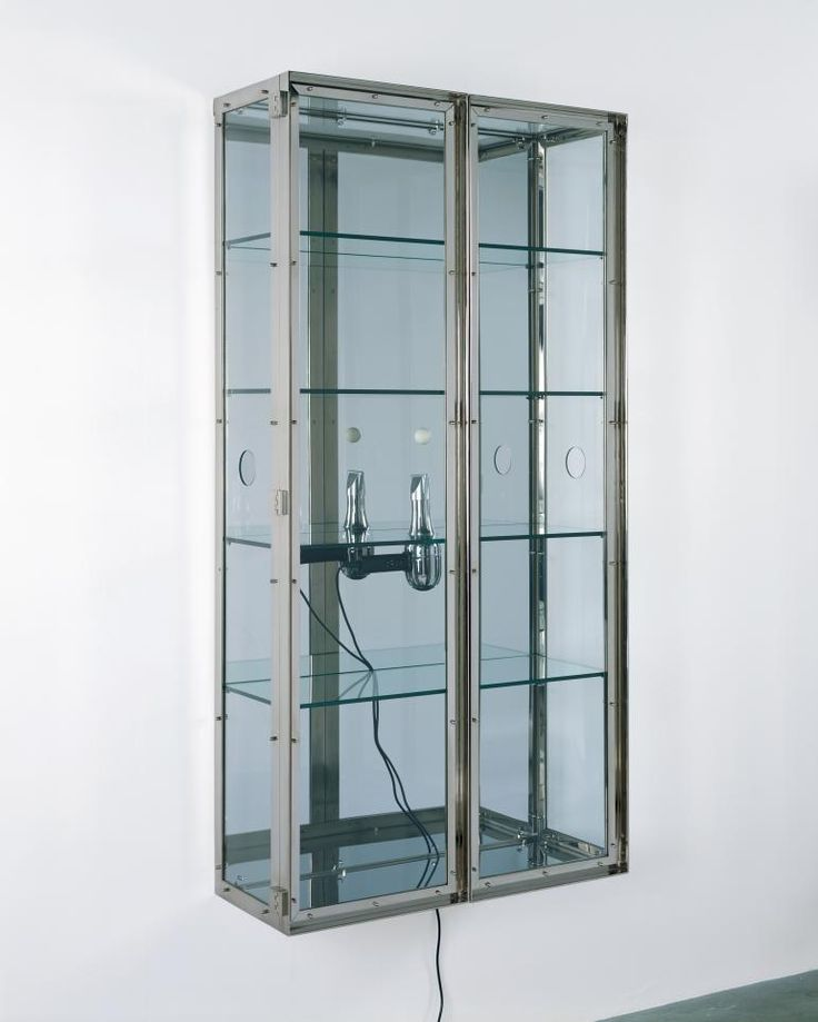 Damien Hirst  Isolation, 2005