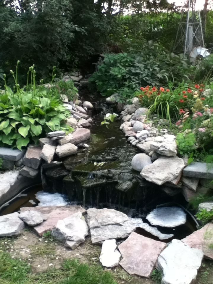 15 Best Images About Pond Ideas On Pinterest Gardens