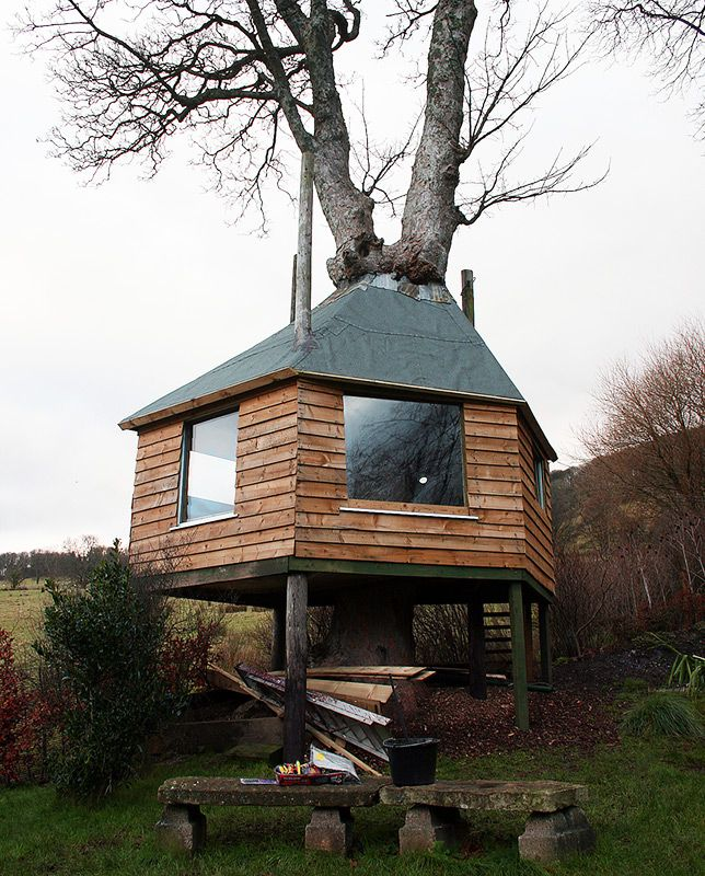 111 best Tree Houses images on Pinterest | Treehouses, The treehouse and  Tiny houses