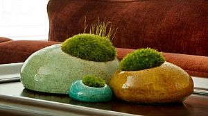 Living sculptures that are easy to take care of.. maybe a pincushion with storage for more in the hollow?