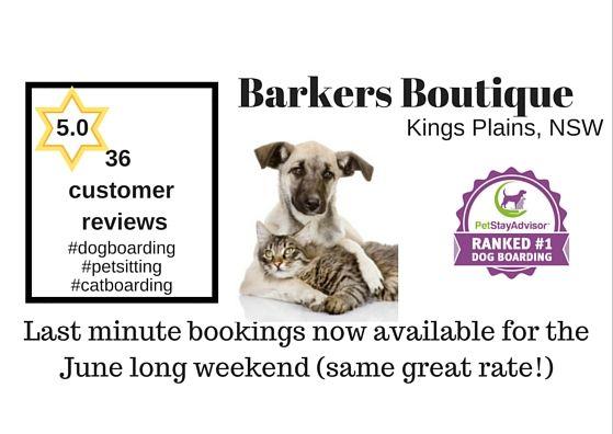#BarkersBoutique #KingsPlains #NSW June long weekend last minute #dogboarding #catboarding http://petstayadvisor.com.au/business/barkers-boutique-holiday-kennels-cattery