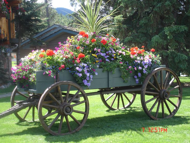 Wagon Garden Perfect For The Acreage!