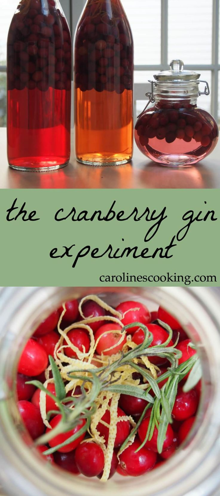 This cranberry gin is a New England take on a British classic, sloe gin- join the experiment to make a great drink for the holidays. See variations on how to make it and follow through to the final results with tasting notes and suggestions for using it.