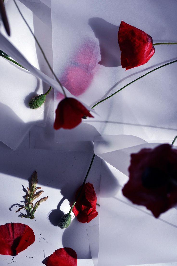 "Fliqped Magazine | Project: ""Transitory soul"" by Mimika Michopoulou"