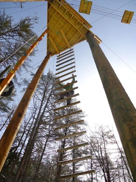 High Ropes Course Hulbert Outdoor Center Pinterest