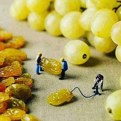 Follow y comparte tus fotos del barrio con nosotros utilizando el #ruzafagente Gracias @devinoslapalma por compartir esta maravilla de foto  Qué calladito lo tenían... #condeduquegente #wine #winelovers #DeVinos #condeduque #madrid #ilovewine #grapes #minitures #vino #uvas