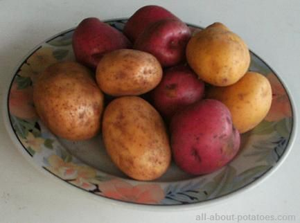 Good website for types of potatoes and which way is best for cooking them.