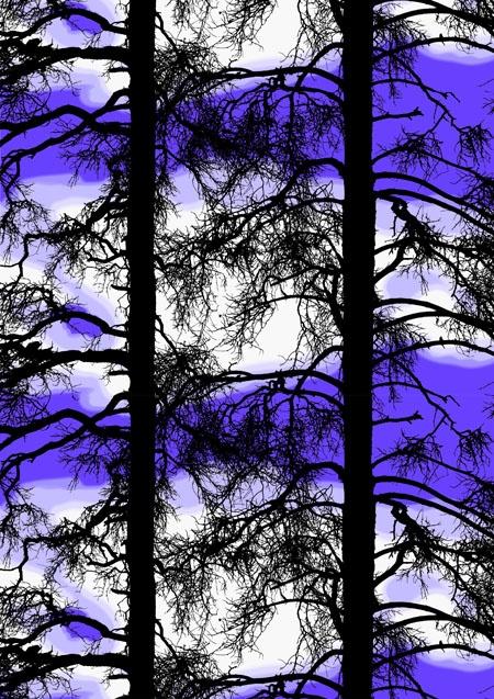 Kelohonka, purple by Tanja Orsjoki 2008/2012/Vallila